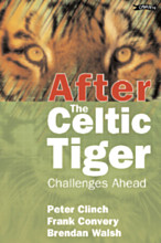 After the Celtic Tiger
